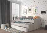 Trasman Terrassa Daybed with Trundle Bed and Drawers